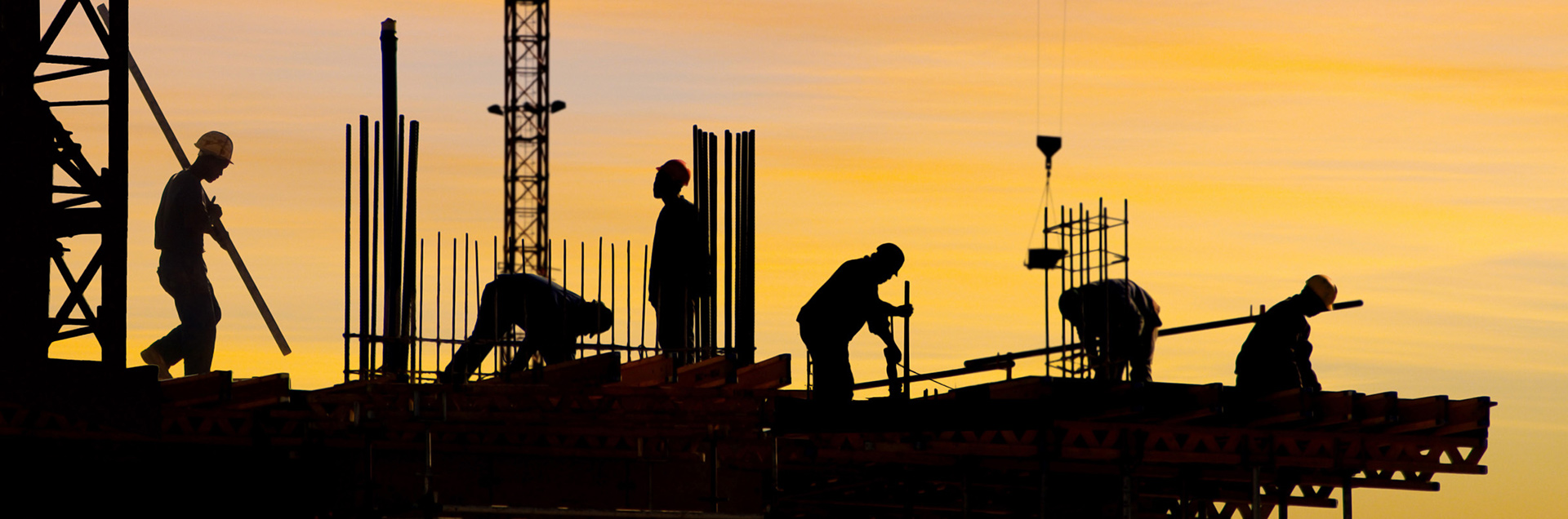 Workers working near sunset